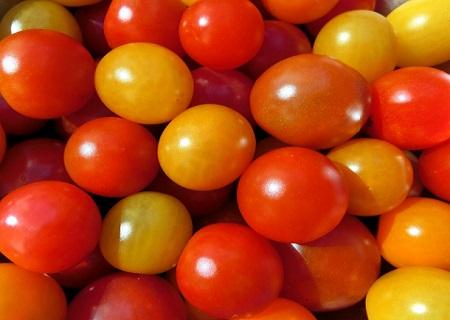 いっぱいに積み上がったミニトマト
